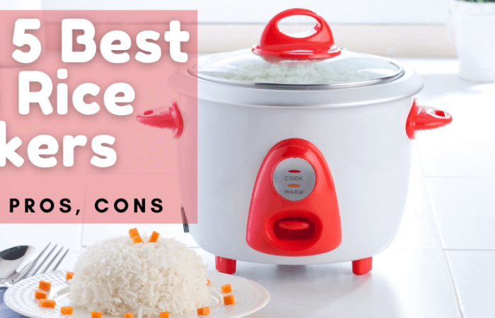 Top 5 Best Mini Rice Cookers 2021